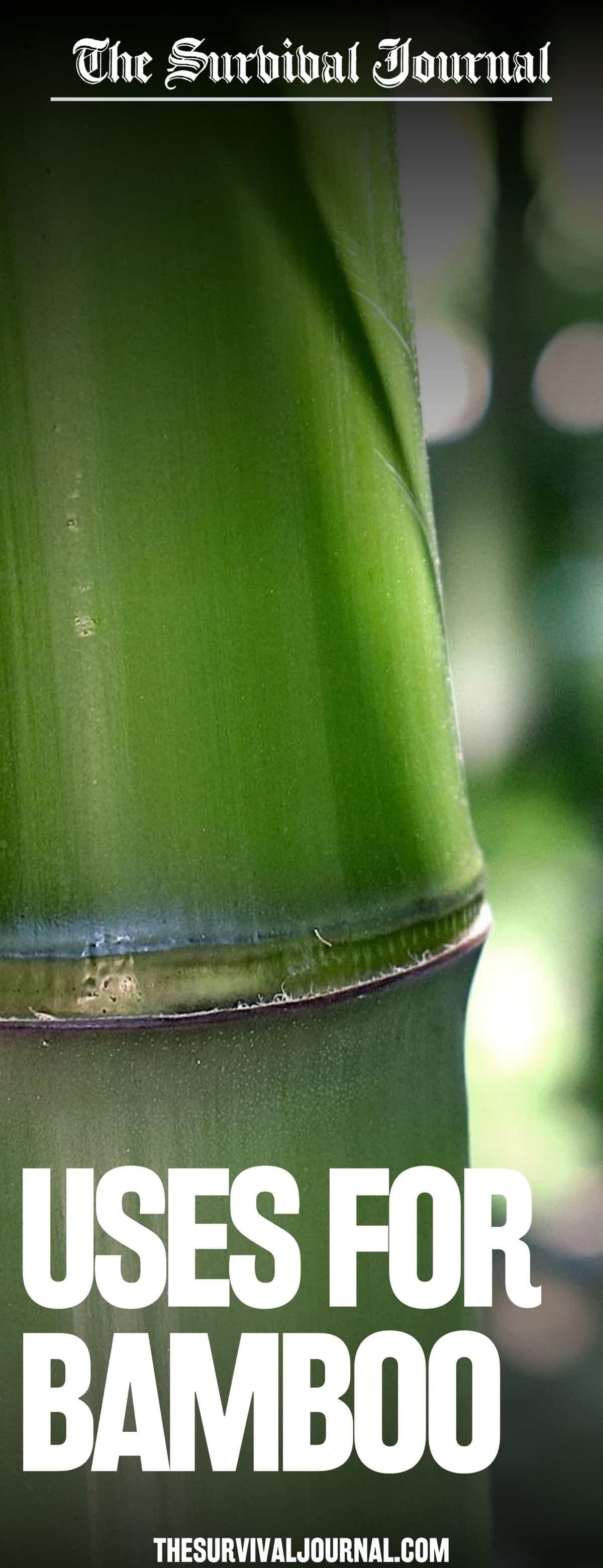 bamboo uses