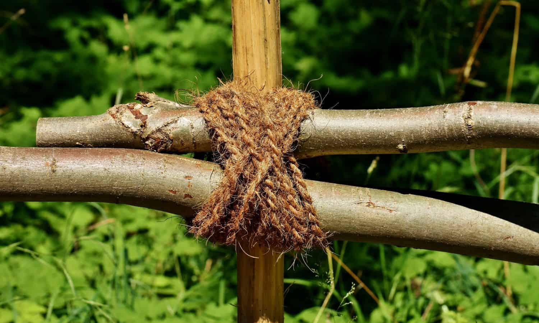 binding knots