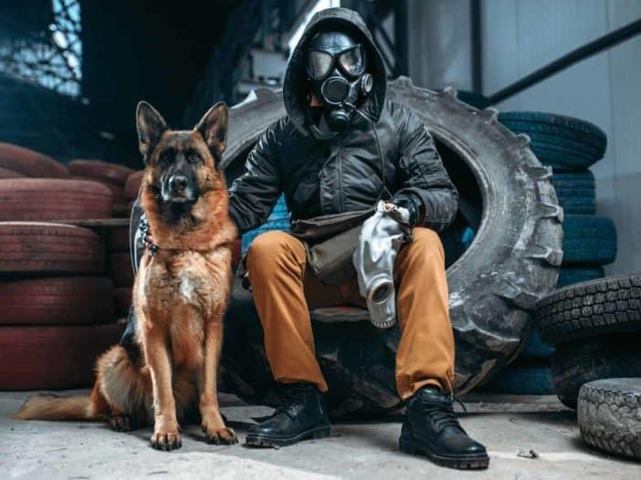 dog gas masks